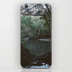 Drabby Swampy Creek iPhone & iPod Skin