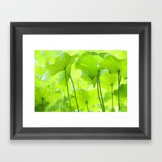 Lotus Leaves Framed Art Print