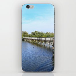 Lake front iPhone Skin