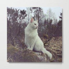 Cat in woods Metal Print