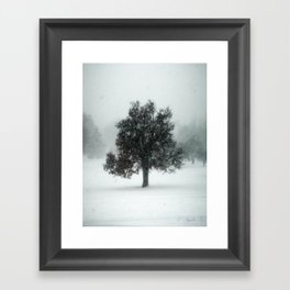 The Loner Framed Art Print