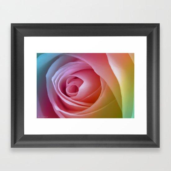 Pastel Rose Framed Art Print