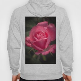 Rose for you Hoody