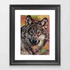 Portrait of a Gray Wolf Framed Art Print