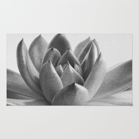 Succulent portrait photography black and white modern for Modern black and white photography