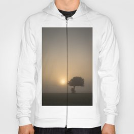 Tree in the Fog Hoody