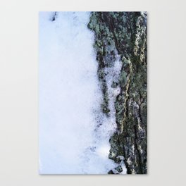 When Snow Starts to Fall Canvas Print