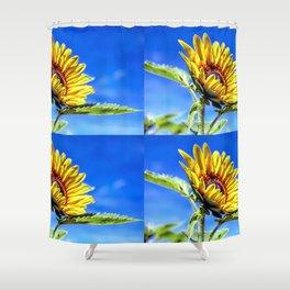 The Sun flower Collection IX Shower Curtain