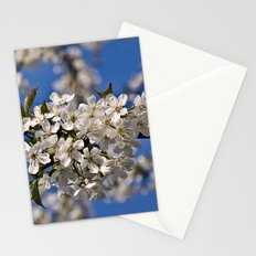 White Cherry Blossoms Stationery Cards