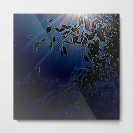 blue light and leaves Metal Print