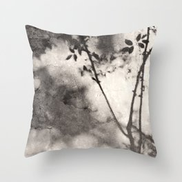 Leaves and Branches Shadows on Stone Wall Throw Pillow
