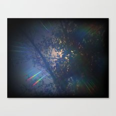 Up In The Trees  Canvas Print