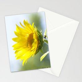 Ladybug and it's Sunflower Stationery Cards