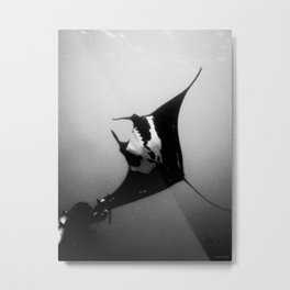 Evading Devil Fish Metal Print