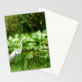 Great Egret in a Green Field Stationery Cards