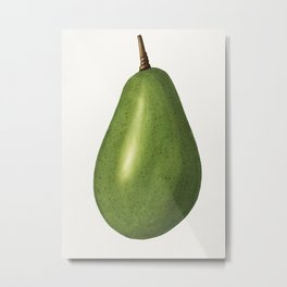 Fresh whole avocado illustration Metal Print