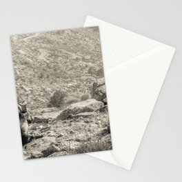The old king Stationery Cards