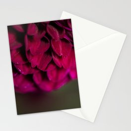 Sultry Petals Stationery Cards