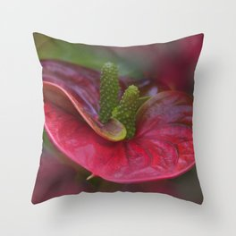 emfurium magenta - red Throw Pillow