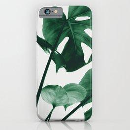 Monstera Vibes #1 #minimal #green #decor #art #society6 iPhone Case