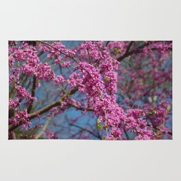 Blue skies and redbud in spring Rug