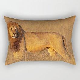 Lion in the morning light - Africa wildlife Rectangular Pillow