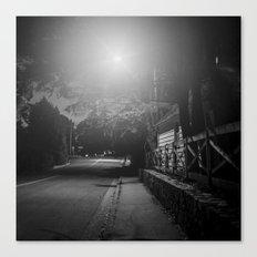Night Moves 6 Canvas Print