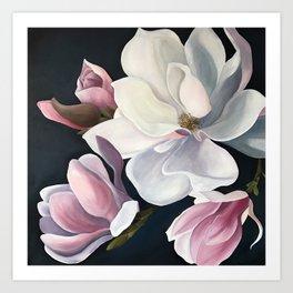 Magnolia Blooms Art Print