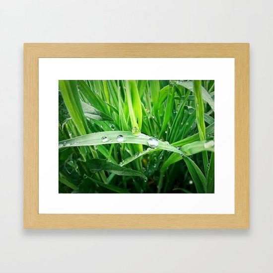 green grass by psychoshadow