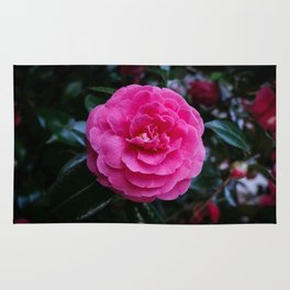 Comely Camellia Rug