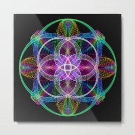 Mandala4 Metal Print