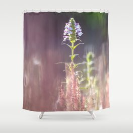 Garden of vibrant colors wildflowers Shower Curtain