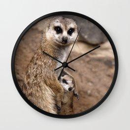 Meerkats | Erdmännchen Wall Clock