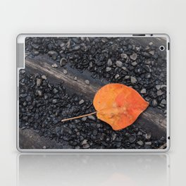 Leaf on the road Laptop & iPad Skin