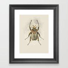 Beetle Geo Framed Art Print