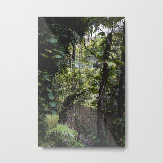 Hidden Jungle River Metal Print