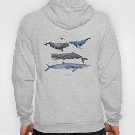 Cetaceans Hoody
