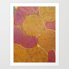 Flight muscle, the most powerful mitochondria in the world Art Print