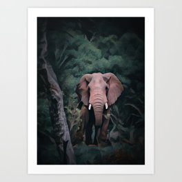 African Forest Elephant Art Print