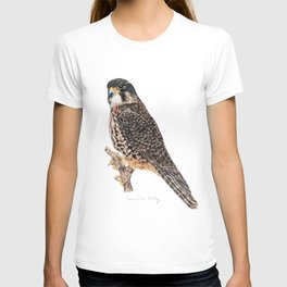 New Zealand Falcon T-shirt