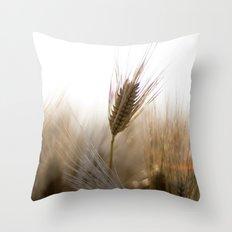 Harvest Flare Throw Pillow