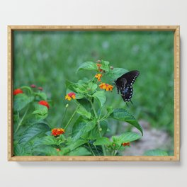 Dark Butterfly Serving Tray