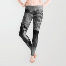 Vintage Barn Leggings