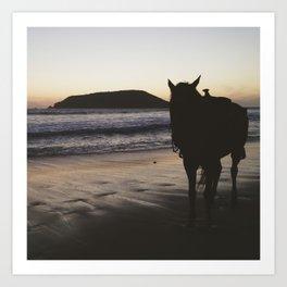 Horse on the Beach - Mexico Art Print
