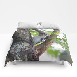 Woodpecker in a Park Tree Comforters
