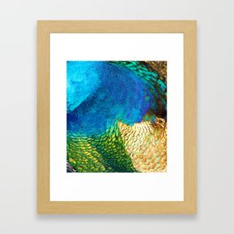 Colors of the Peacock Framed Art Print