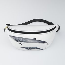 Minke whale with baby whale Fanny Pack