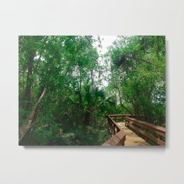 Pathway through the Jungle Metal Print