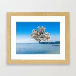 Tree in blue Framed Art Print