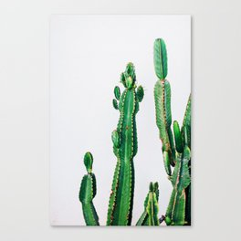 youre a prick, but i love you Canvas Print